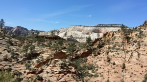 Near junction to East Rim Trail