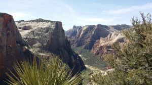 Blick in den Zion Canyon
